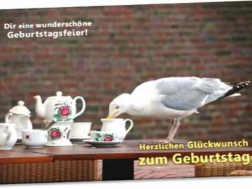 Christliche Geburtstagskarte: Möve auf Café-Tisch - Psalm 127,2