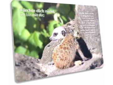 Christliche Postkarte: Baby-Erdmännchen