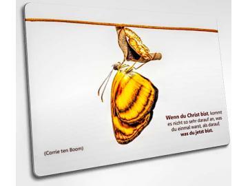 Christliche Postkarte: Frisch geschlüpfter Schmetterling
