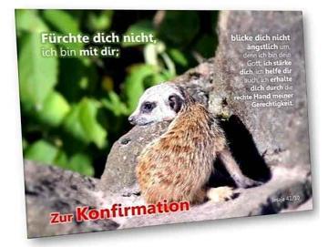Christliche Konfirmationskarte: Baby-Erdmännchen