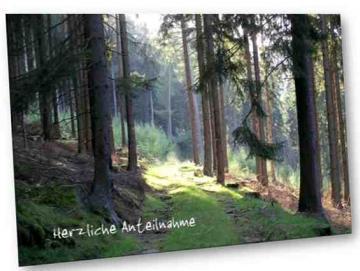 Christliche Trauerkarte: Waldweg im Rothaargebirge
