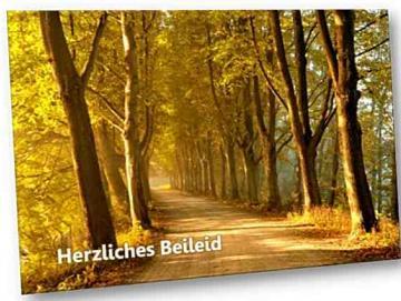 Christliche Trauerkarte: Baumallee - Psalm 120,1