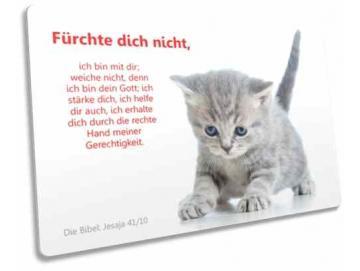 Christliche Postkarte: Ängstliches Kätzchen
