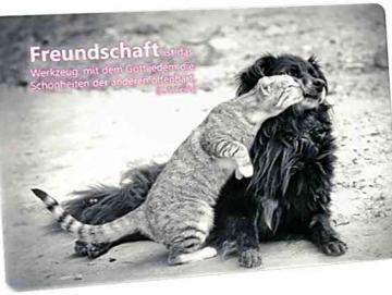 Christliche Postkarte: Mit Hund schmusende Katze - Zitat von C. S. Lewis