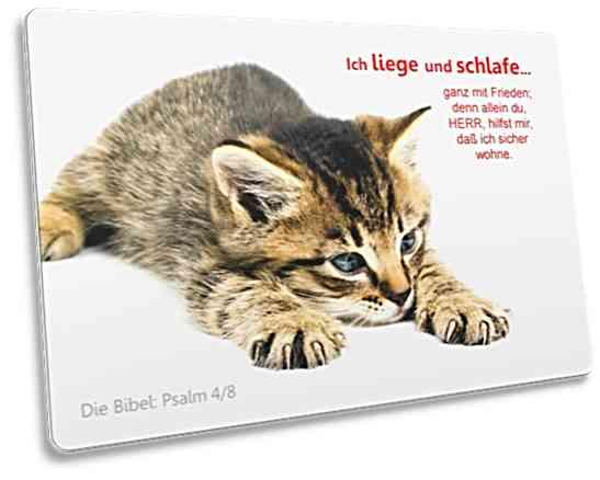 Christliche Postkarte: Dösendes Kätzchen