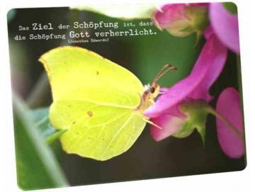 Christliche Postkarte: Schmetterling auf Blüte