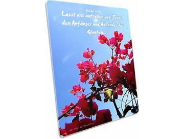 Christliche Postkarte: Blühender Strauch - Hebräer 12,2