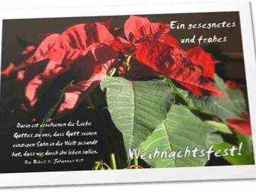Christliche Weihnachtskarte: Weihnachtsstern - Klappkarte