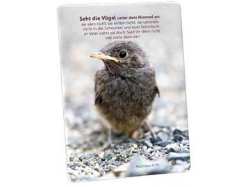 Christliche Postkarte: Kleiner Sperling