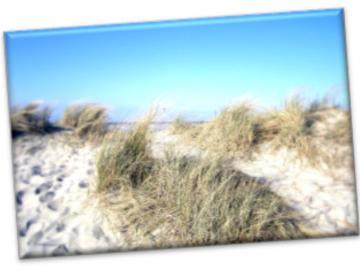 Leinwanddruck: Nordsee - Sommerdüne