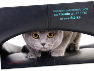 Christlicher Leinwanddruck: Katze auf Ledersessel