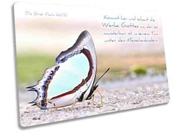 Christliche Postkarte: Bunter Schmetterling - mit Bibelvers: Psalm 66,5