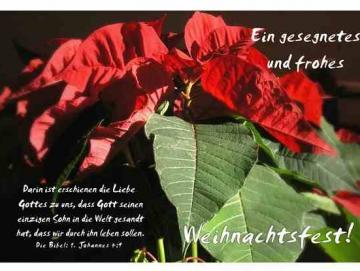 Christliche Weihnachtskarte: Weihnachtsstern