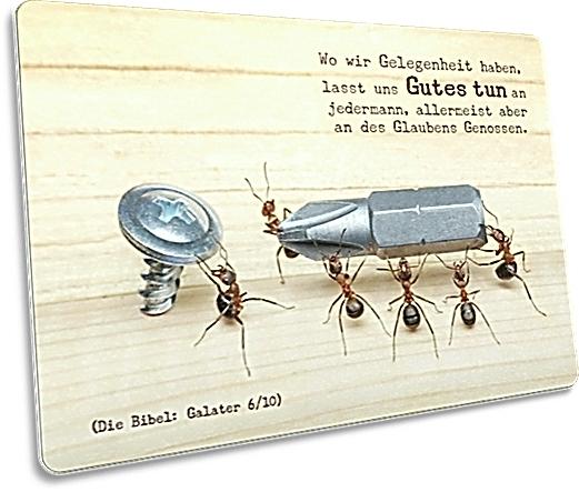 Christliche Postkarte: Ameisen bei der Arbeit - Postkarte mit Bibelvers