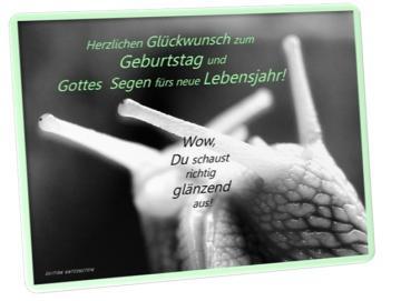 Christliche Postkarte Geburtstag: Weinbergschnecken