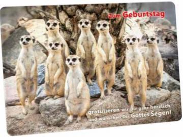 Christliche Geburtstagskarte - Postkarte : Erdmännchen-Rudel