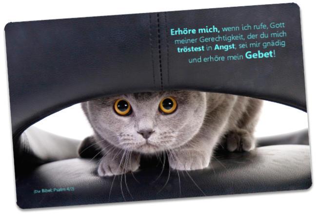 Christliche Postkarte: Katze auf Ledersessel - Ermutigungskarte mit Bibelwort - Nehemia 8,10