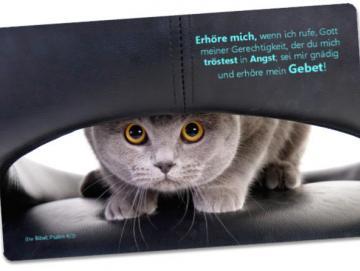 Christliche Postkarte: Katze auf Ledersessel - Psalm 4,2