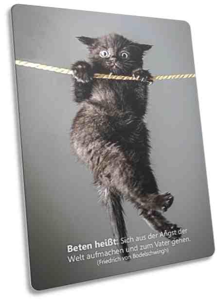 Christliche Postkarte: An Seil hängendes Kätzchen - Karte mit christlichem Zitat