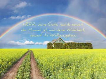 Christliches Poster A2 - Regenbogen über Rapsfeld
