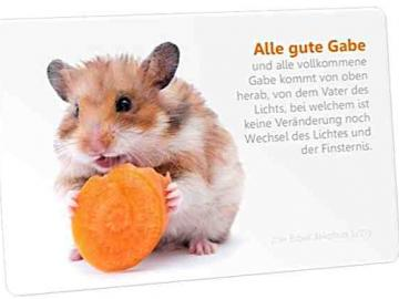 Christliche Postkarte: Hamster mit Karotte - mit Bibelvers: Jakobus 1,17