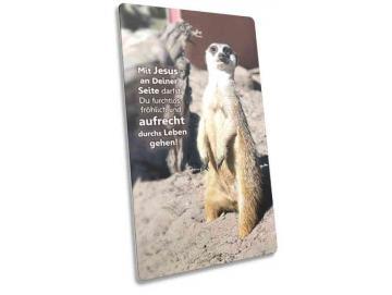 Christliche Postkarte lang - stehendes Erdmännchen - Maxicard