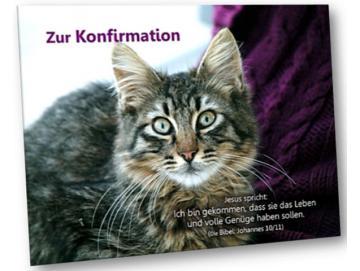 Christliche Konfirmationskarte - Katzenportrait