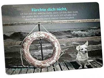 Christliche Postkarte: Hund an stürmischer See - Mit Bibelvers: Jesaja 41,10