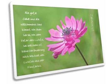 Christliche Postkarte: Anemone