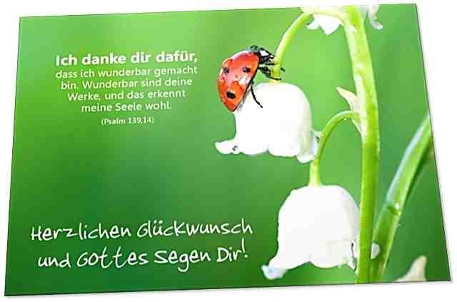 Christliche Glückwunschkarte: Marienkäfer auf Maiglöckchen - Psalm 139,14