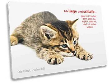 Kühlschrankmagnet - Dösendes Kätzchen