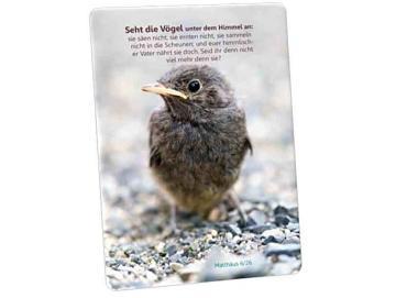 Kühlschrankmagnet - Kleiner Sperling