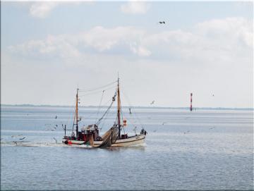 Leinwanddruck: Kutter auf Fangfahrt - Nordsee